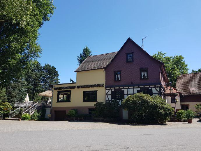 Hotelanlage mit Waldgaststätte in Alleinlage Nordhausen