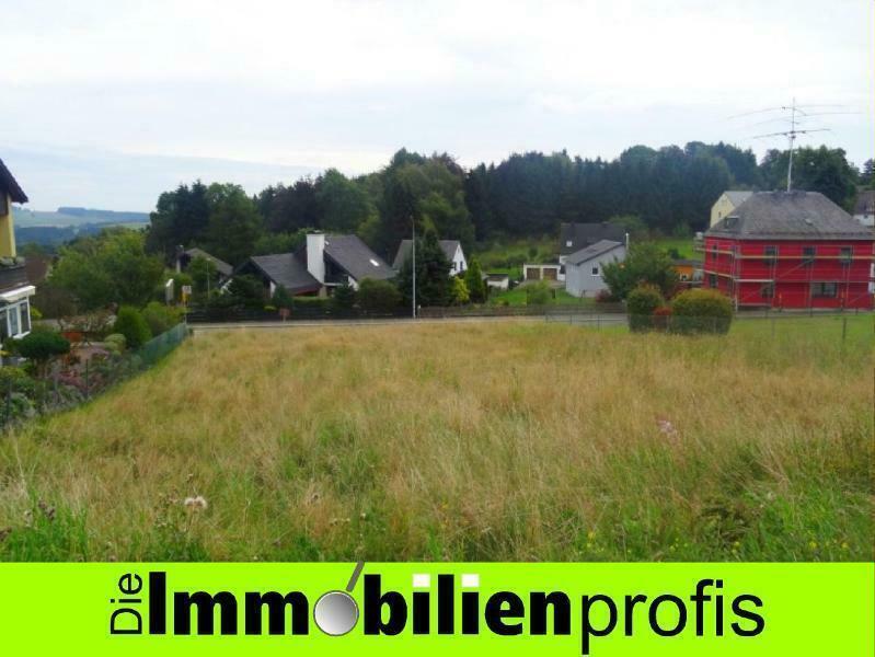 Attraktives Baugrundstück am Stadtrand von Helmbrechts Helmbrechts