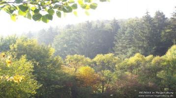 Waldfläche für den Kachelofenbesitzer