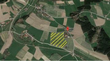 Ackerland Zu Verkaufen Erding - Dorfen