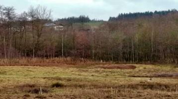 Landwirtschaftliches Grundstück bei Niederbergkirchen