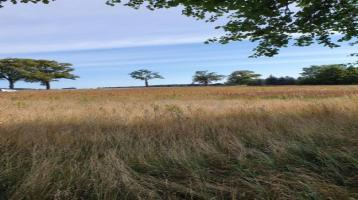 Großzügiges, bauträgerfreies Grundstück nordöstlich von Anklam