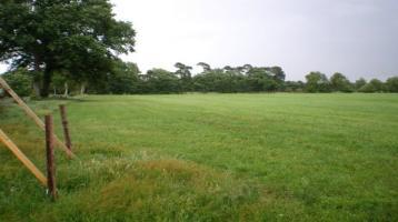 Pferdefreunde aufgepasst !! Baugrundstück in ländlicher ruhiger Wohnlage mit ca. 17880 m² Weideland