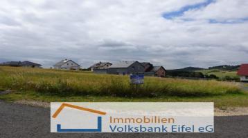 Für jeden etwas dabei - großes Grundstücksangebot im idyllischen Eifelort Kirchweiler!