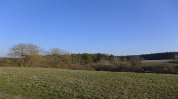 Naturverbundenes Leben - Ruhige, sonnige Baugrundstücke in Weidensees