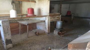 Renovierungsbedürftiger Bauernhof mit Bauerwartungsland