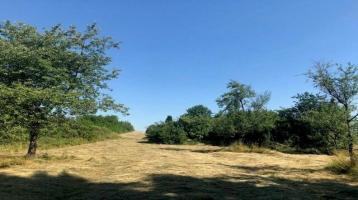Idyllisches Grundstück mit Bauerwartungsland!!!
