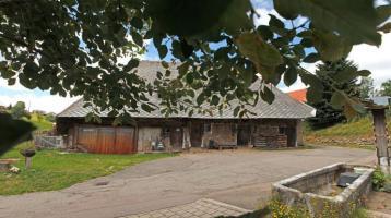 Neues ausbaubares Einfamilienhaus mit separatem großen Pferdestall