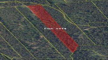 Landwirtschaftliche Flächen und Wälder in der Umgebung von Schönsee
