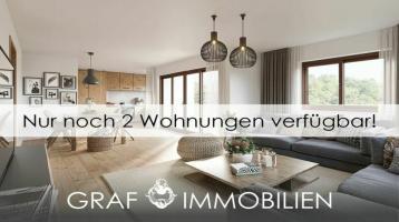 WiesSee3 - Exklusiver Neubau in Seenähe - Bergblick