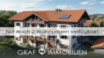 WiesSee3 - Exklusiver Neubau in Seenähe - Bergblick - ca. 146 m² großer Garten