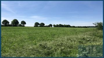 *Sichern sie sich die letzten bauträgerfreien Grundstücke in Magdeburg - Baustart ab sofort möglich*