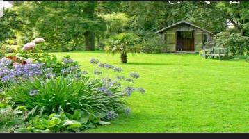 Schrebergarten kleingarten