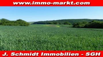 Kapitalanlage: Acker-/Grünland (2,7580 ha) in 06526 Sangerhausen