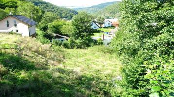 Baugrundstück mit unverbaubarem Blick ins Grüne in Ahrbrück