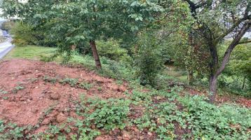 Gartengrundstück in Schweich