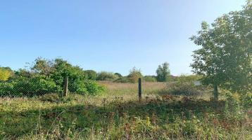 Bauen Sie ihr Traumhaus im Grünen! Gut geschnittenes, bauträgerfreies Grundstück in Zossen