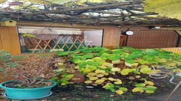 Bungalow mit Garten, Eigentumsland in Nordhausen Gumpethal,302 m²