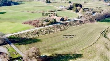 Alter Allgäuer-Bauernhof mit großem sonnigen Grundstück und einer traumhaften Bergsicht