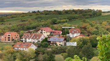 Traum Höhenlage Frickenhausen Einfamilienhaus m. Einliegerwohnung Baujahr 1995