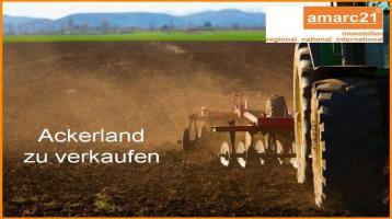 12 ha Acker- und Grünland