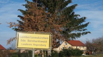 DOPPELHAUSHÄLFTE /N ZUM VERLIEBEN - in Bernhardswald-Lambertsneukirchen - in ländlich ruhiger Ortsteillage *** provisionsfrei ***