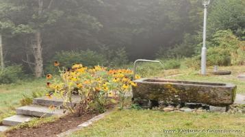 Alleinlage - Natur - Sonne - Ehemaliges Bauernhaus mit ca. 11000 m² Grund ums Haus - ein Traum und eine Rarität *****