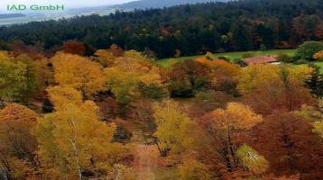 Haus mit 8 Wohneinheiten und weiter bebaubarem Grundstück in wunderschöner Ferienregion des Arbers