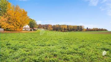 Bau- und Ackerland in Blumberg - riesiges Grundstück ohne Altbestand