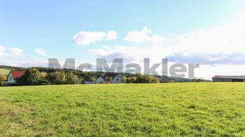 Inkl. 7.861 m² Grundstück: Bungalow mit Potenzial für Bastler, Tierhalter o.Ä. - sofort verfügbar!